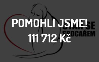 Psí útulek města Český Krumlov